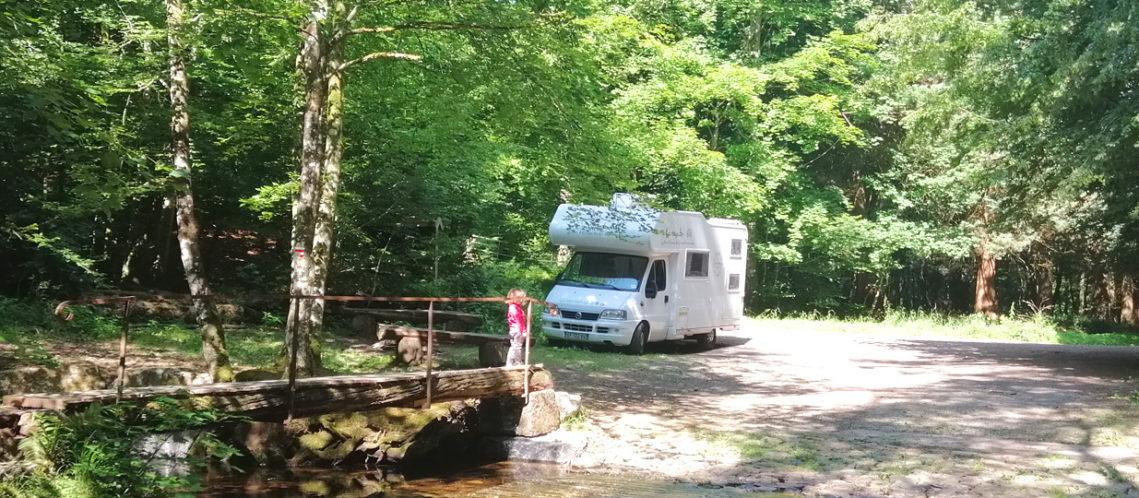 Forêt Ardenne belge