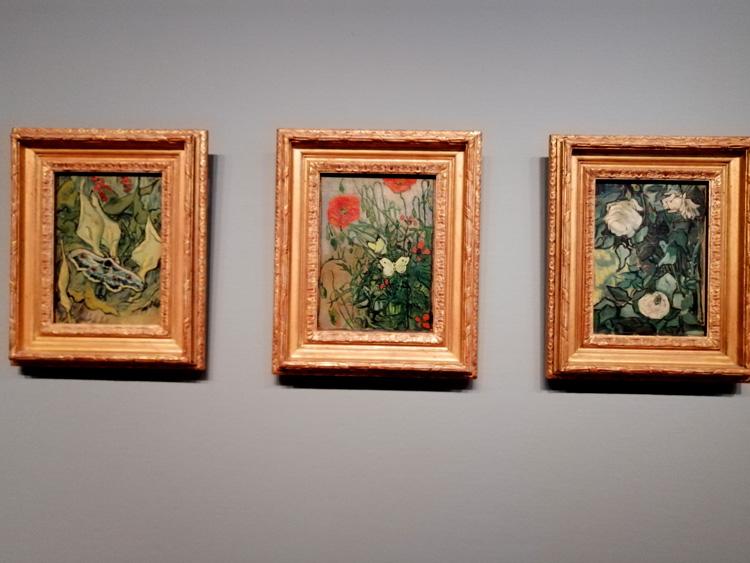 fleurs-van-gogh