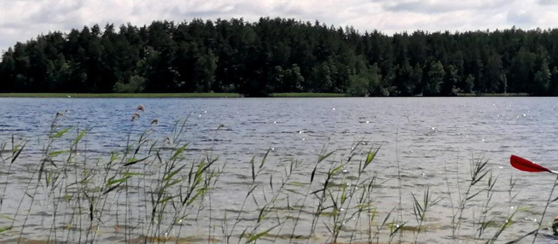bandeau-paddle